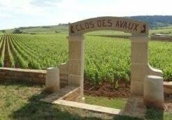 De Bourgondische wijnen_ Porte des Avaux_Beaune Credits LDallerey