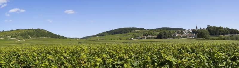 De Pays Beaunois: uitzonderlijk mooie landschappen ©OTI-I&A