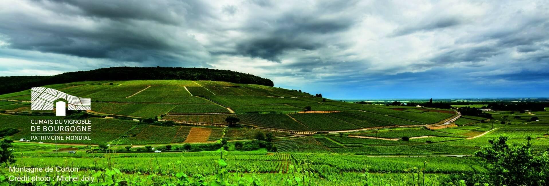 """De Bourgondische """"Climats"""" toegelaten op de Wereld Erfgoedlijst van UNESCO"""