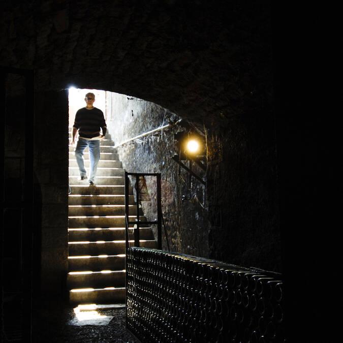 Afdalen naar de kelder
