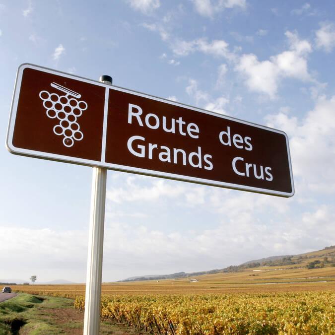 Wijnroute langs de Grands Crus