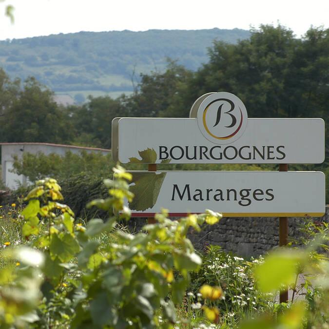 Maranges, wijnspoor